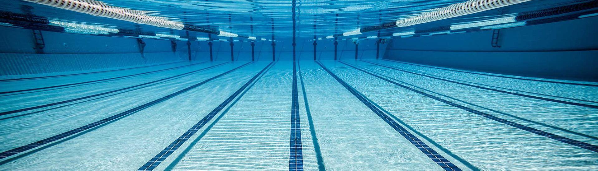 Activitats aquàtiques per a adults